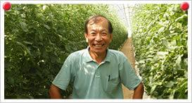秋トマト生産者 川田 彰さん